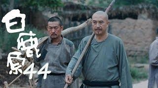 白鹿原   White Deer 44【DVD版】(張嘉譯、秦海璐、何冰等主演)
