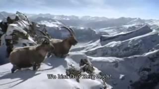 Das Echo in den Bergen