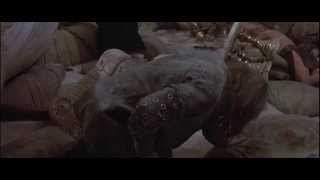 Conan, the Barbarian - The Orgy HD