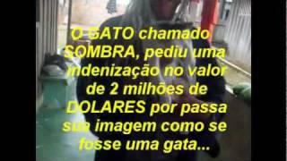Cia de danca ritmos. Djavu x Djaburu de Buritis - Rondônia