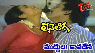Teneteega Songs - Muddul Kavalena - Rajendra Prasad - Rekha - Sitara