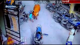 Watch CC Video | of  Cow Attacks a Small Girl in Surat