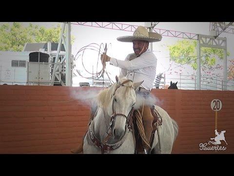 Piales 3 de 3 Gustavo Sanchez Arena Vallarta 2017