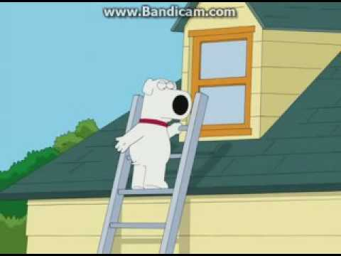 Xxx Mp4 All 9 11 Arab Jokes In Family Guy 3gp Sex