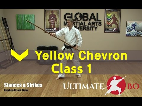 Bo Staff Class for Complete Beginners - Yellow Chevron - Class #1