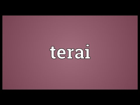 Terai Meaning