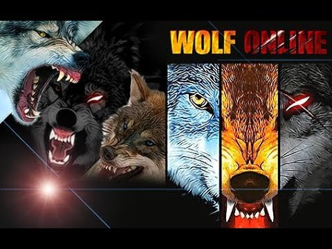 Xxx Mp4 Wolf Online Guide Video Invite You To The Hunting Ground Of The Wolves 3gp Sex