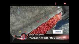 Kejadian Aneh! Tomat Banjiri Selokan Kampung Cimanuk, Garut - iNews Pagi 13/08