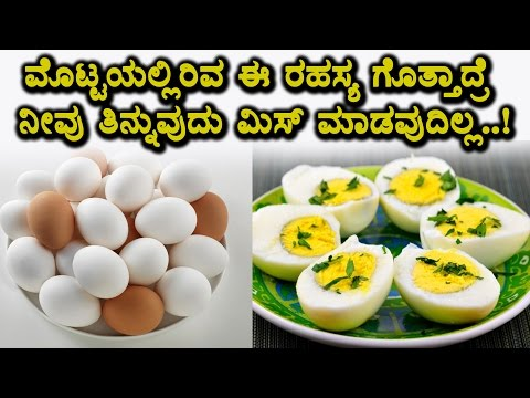 Xxx Mp4 Shocking News About Egg Must Watch Video Top Kannada Health Tips 3gp Sex