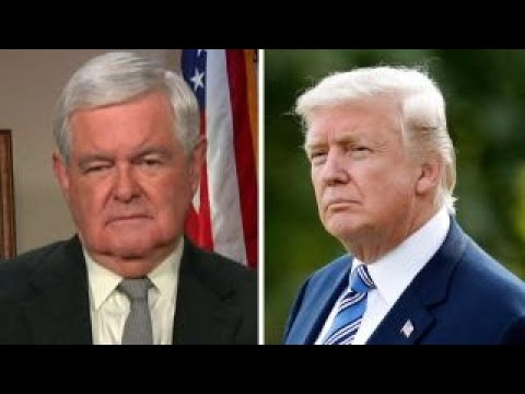 Gingrich The deep state sees Trump as the mortal enemy