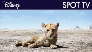 Le Roi Lion (2019) - Spot TV : Pas de souci | Disney