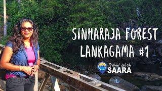 Travel With Saara | Lanka Gama - Sinharaja Forest | Sri Lanka | TRAVEL VLOG