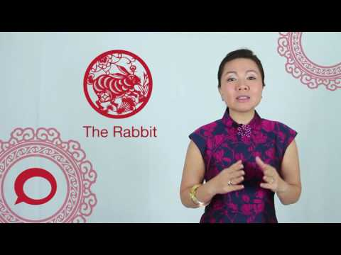 The Rabbit 2017 Chinese Zodiac Predictions With Jessie Lee The Coverage