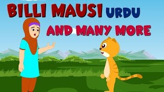 Billi Mausi and Many More | بلی مؤسی | Urdu Nursery Rhymes Collection
