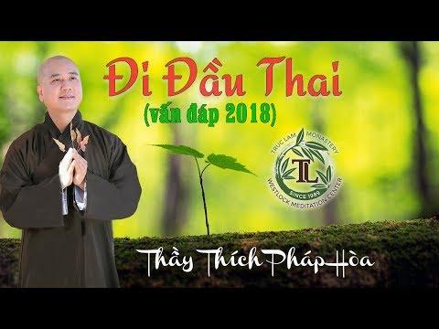 Xxx Mp4 Trả Lời Vấn đáp Rất Vui Về Đi Đầu Thai Thầy Thích Pháp Hòa 3gp Sex