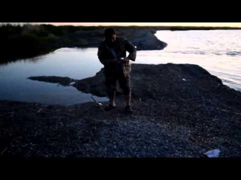 балхаш приозерск рыбалка