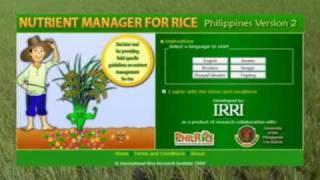 3. Pag-abono sa Panahon ng Pagsusuwi at Paglilihi: Ang mga Kwento ni Ryza