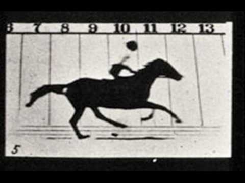 Meet the Art - Eadweard Muybridge Photographs of Motion