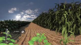 NEW Seed Applied Solutions 360 Video