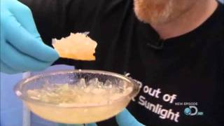 Mythbusters Double Dipping