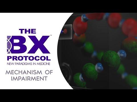 BX Protocol Mechanism of Impairment Module 2