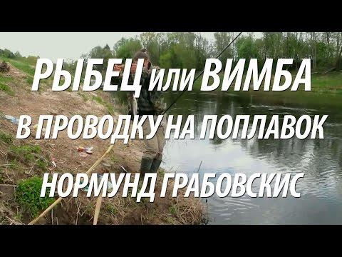 ловля рыбца весной видео