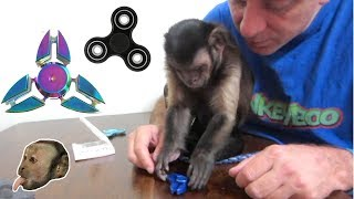 Monkey Fidget Spinner UnBoxing & Review