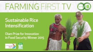 SRI-Rice:  Winner, Olam Prize for Innovation in Food Security