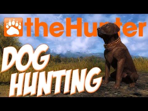 Xxx Mp4 The Hunter Dog Hunting Frankie The Labrador Retriever The Hunter Dog Update Gameplay 3gp Sex