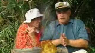 Great Lakes Heating and Air Conditioning Body Heat.wmv