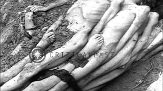 Naked dead bodies of Jewish inmates tied together before burial at concentration ...HD Stock Footage