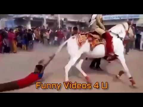 Xxx Mp4 Funny Vedios Best Funny Clip Of 2017 Whatsapp Vedio Prank Vedio Best Funny Clip Of 2017 3gp Sex