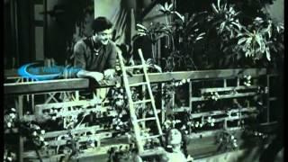 Gemini Ganesan Hits - Thanimiyella inimai HD Song