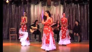 Sevillanas para Bailar - La Puerta de Toledo - Parte 8