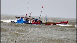 Ba tàu cá Quảng Ngãi chìm trong bão dữ, 12 ngư dân thoát chết