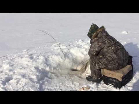 ловля пеляди на озере