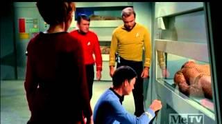 Star Trek - Kirk Meets Khan (Widescreen)