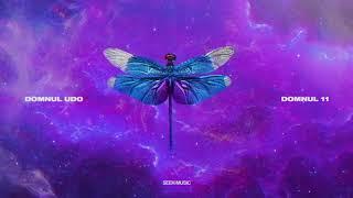 Domnul Udo - Trap House feat. Nane, NOSFE, Shift, Killa Fonic (Audio)