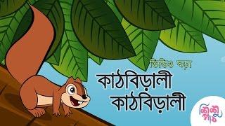 Kathbirali Kathbirali Bangla Chora - কাঠবিড়ালী কাঠবিড়ালী বাংলা ছড়া