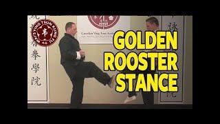GOLDEN ROOSTER STANCE. GOOD FOR BALANCE, STRENGTH, & BLOCKING KICKS.