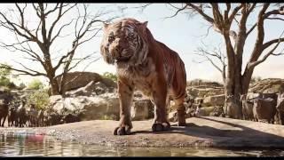 The Jungle Book  Mowgli Vs Shere Khan   Fight Scenes HD
