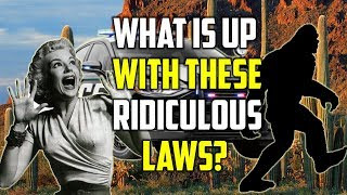 The Top 5 Dumbest Laws Of All Time In The USA