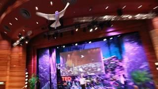 A robot that flies like a bird | Markus Fischer