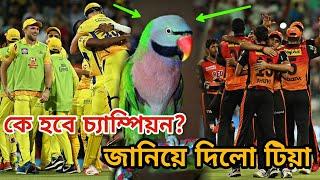 আলোচিত সেই টিয়া পাখির ভবিষৎবাণীতে আইপিএল চ্যাম্পিয়ন হবে যে দল! জানুন   CSK vs SRH IPL Final 2018