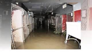 2013 Morrow Shelter Floods