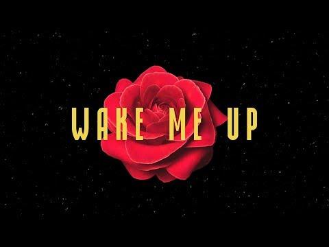 Avicii Wake Me Up Mellen Gi & Tommee Profitt Remix Lyrics