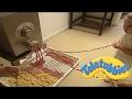 ★Teletubbies English Episodes★ Amy's House (Pasta) ★ Full Episode - HD (S05E130)