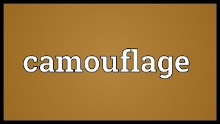 Camouflage Meaning