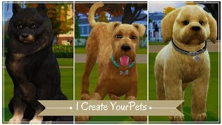 Alister, Micky & Lumo || I Create YOUR Pets || The Sims 4 CAP