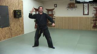 Bo Shuriken - Throwing Darts / Spikes - Ninja Training Free Video Blog - Ninja weapons